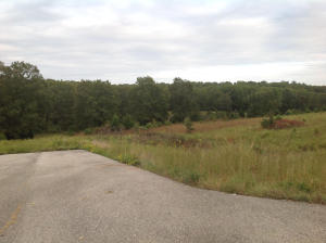 Tbd Highway 63 Willow Springs Mo 65793