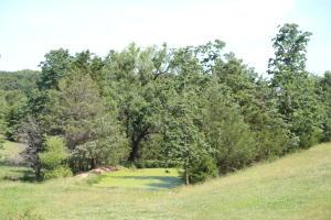 501 Big Oak Marshfield Mo 65706
