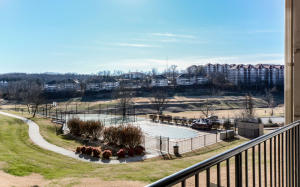 330 South Wildwood Branson Mo 65616 Unit 3