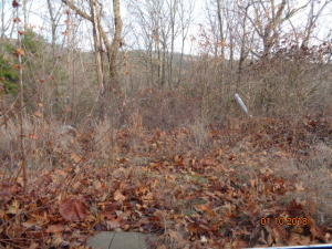 Lot 68 Skylee Drive Hollister Mo 65672