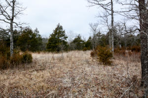 Lot 57 Forest Lake Drive Branson West Mo 65737