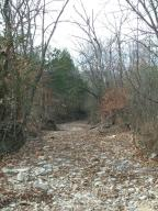 19366 Farm Road 2065 Aurora Mo 65605