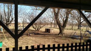 8195 North Farm Road 137 Willard Mo 65781