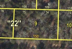 Lot 7475 Apache Shell Knob Mo 65747