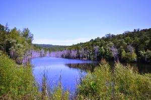 Tbd Emory Creek Branson Mo 65616