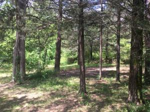 Tbd Parcel K Meadow Woods Cr 525 Winona Mo 65588