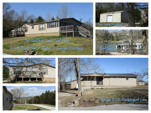 361 Goldfinch Combined Listing Shell Knob Mo 65747