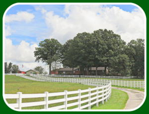 2024 Tennessee Ozark Mo 65721