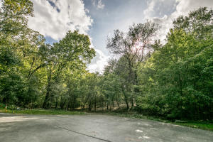 Lot 3 South Augusta Springfield Mo 65809