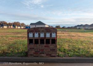 131 Hawthorn Rogersville Mo 65742