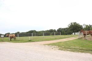 186 Harvest Rogersville Mo 65742