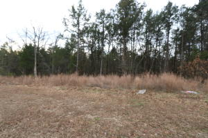 Lot 23 Royal Dornoch Branson Mo 65616