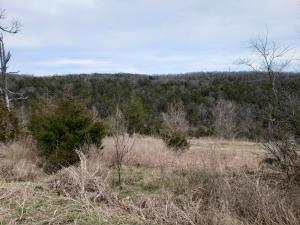 000 Country Ridge Branson Mo 65616