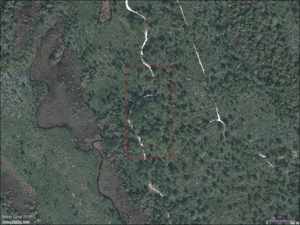 土地 為 出售 在 Volco Volco Edgewater, 佛羅里達州 32141 美國
