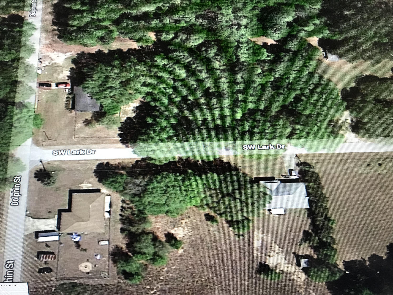 Terrain pour l Vente à E Lark E Lark Dunnellon, Floride 34434 États-Unis
