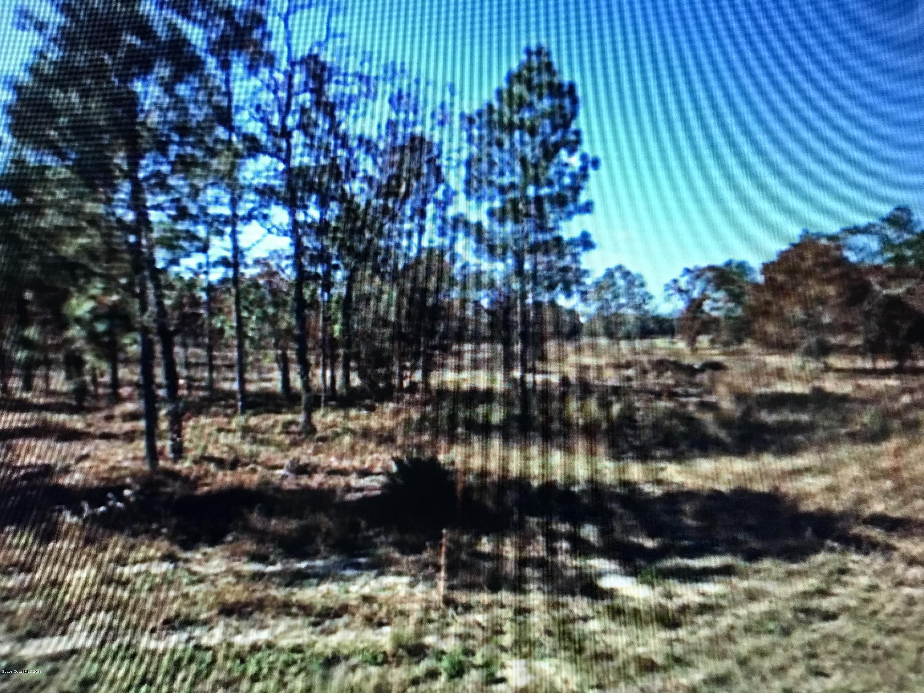 Land for Sale at S Ridgewood S Ridgewood Dunnellon, Florida 34434 United States