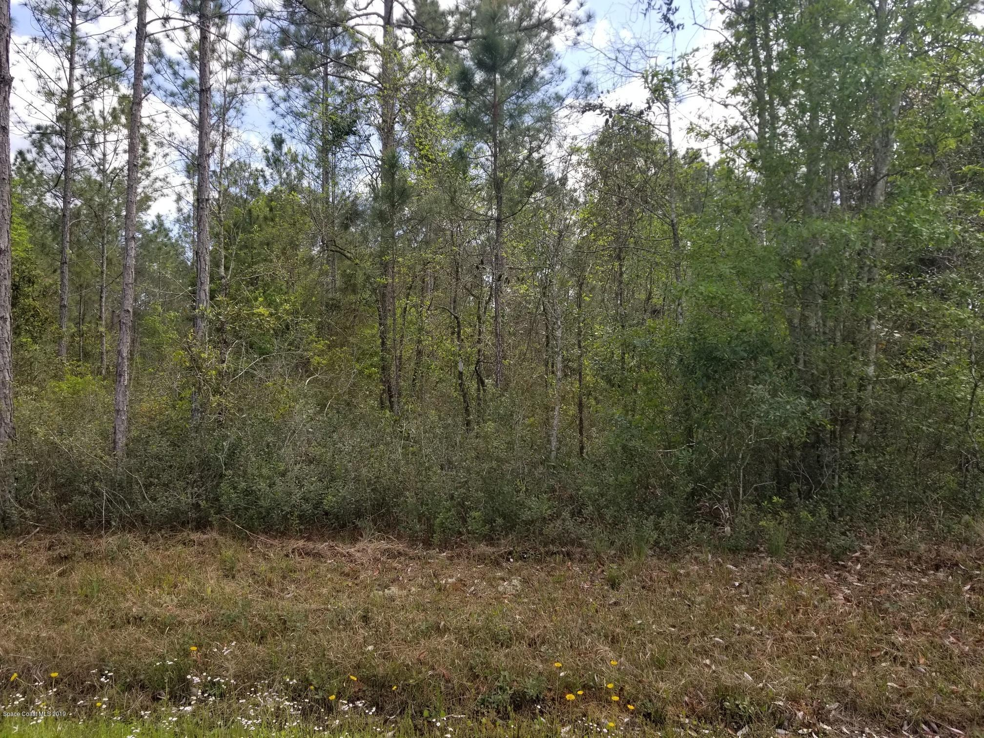 Land for Sale at 4425 Benedict 4425 Benedict Hastings, Florida 32145 United States