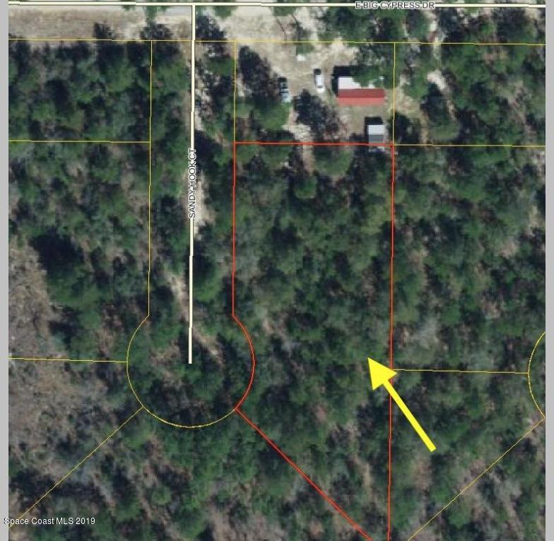 Land for Sale at Sandy Hook Defuniak Springs, Florida 32433 United States