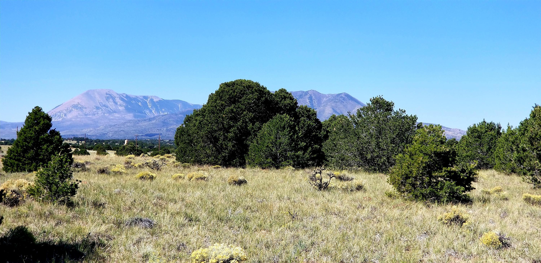 Property located at  Navajo Ranch Resorts #3  Walsenburg CO 81089 photo