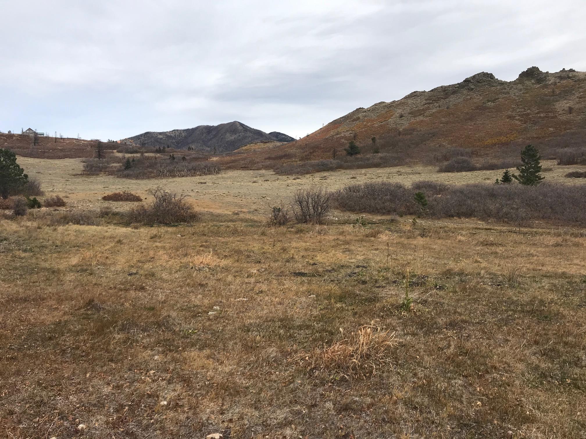Property located at  Tres Valles West  La Veta CO  photo