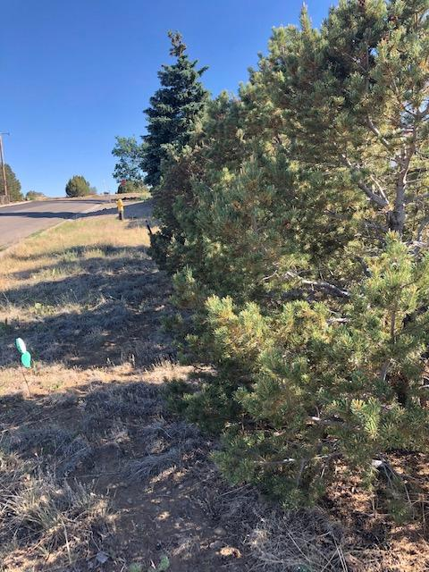Property located at TBD Welton Ave Walsenburg CO 81089 photo