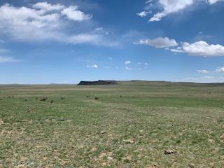 Lot 262 Colorado Land & Livestock  Walsenburg CO