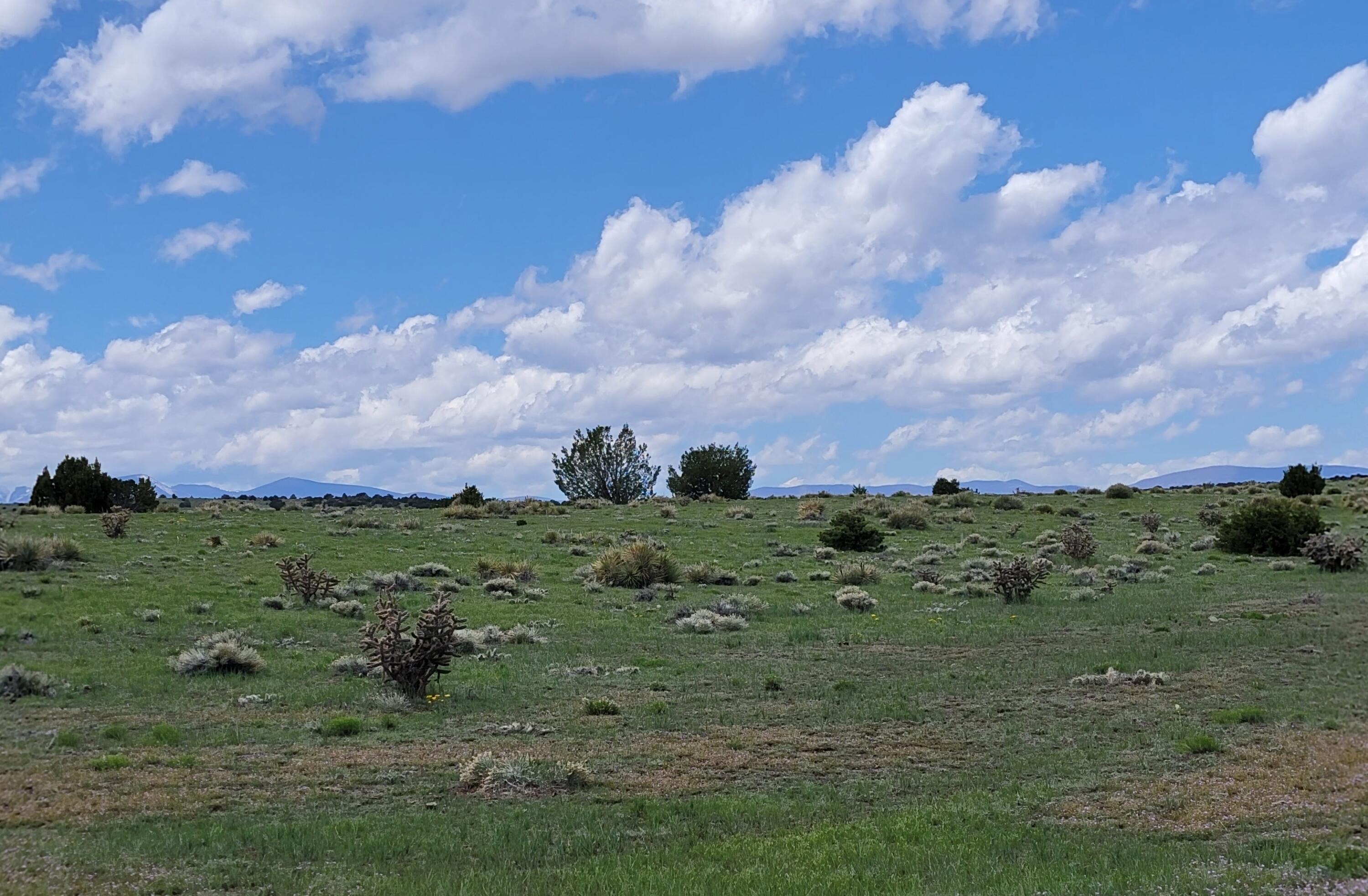Property located at TBD 600 Acres West  Walsenburg CO 81089 photo