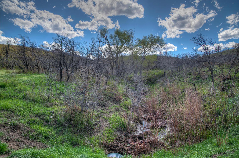 Property located at  Raspberry Mountain Ranch  La Veta CO 81055 photo