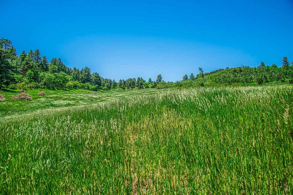 Property located at 8597 State Hwy 165  Rye CO 81069 photo