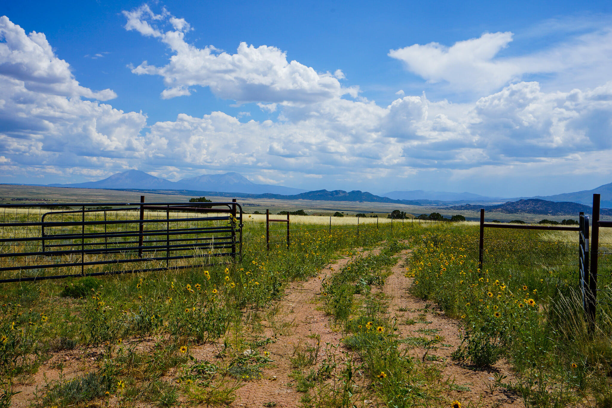 Property located at TBD County Road 616  Walsenburg CO 81089 photo