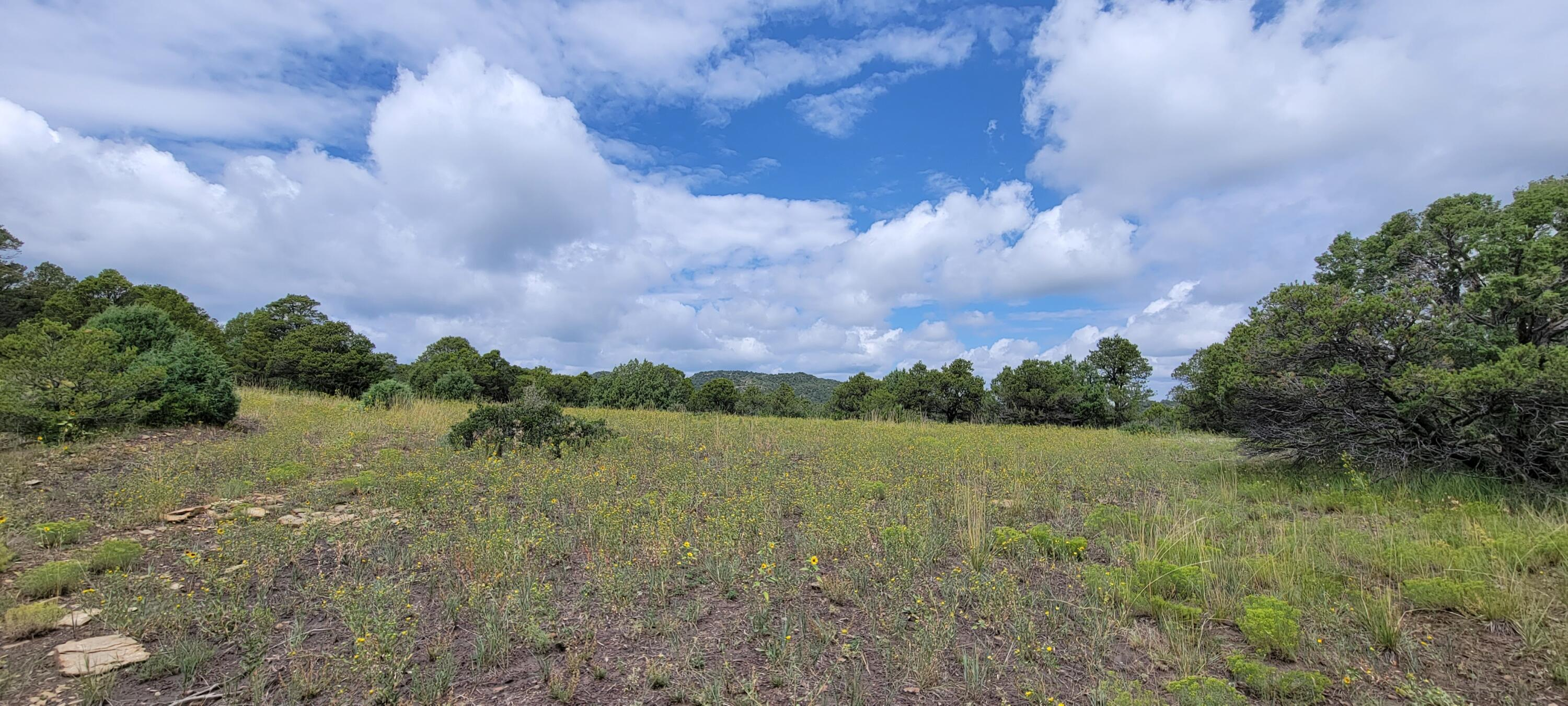 Property located at  Peacock Road  Trinidad CO 81082 photo