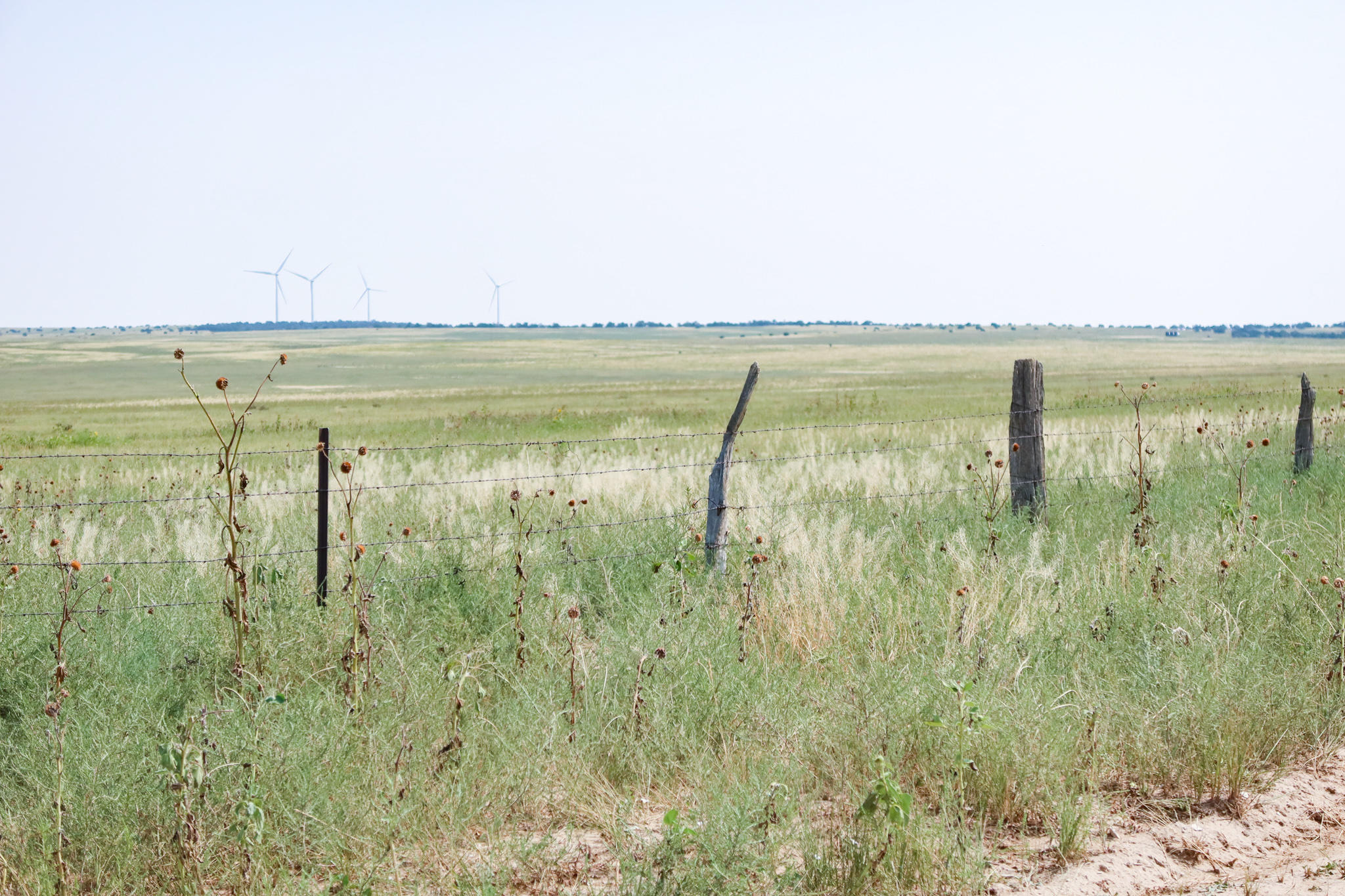 Property located at TBD County Road 214  Walsenburg CO 81089 photo
