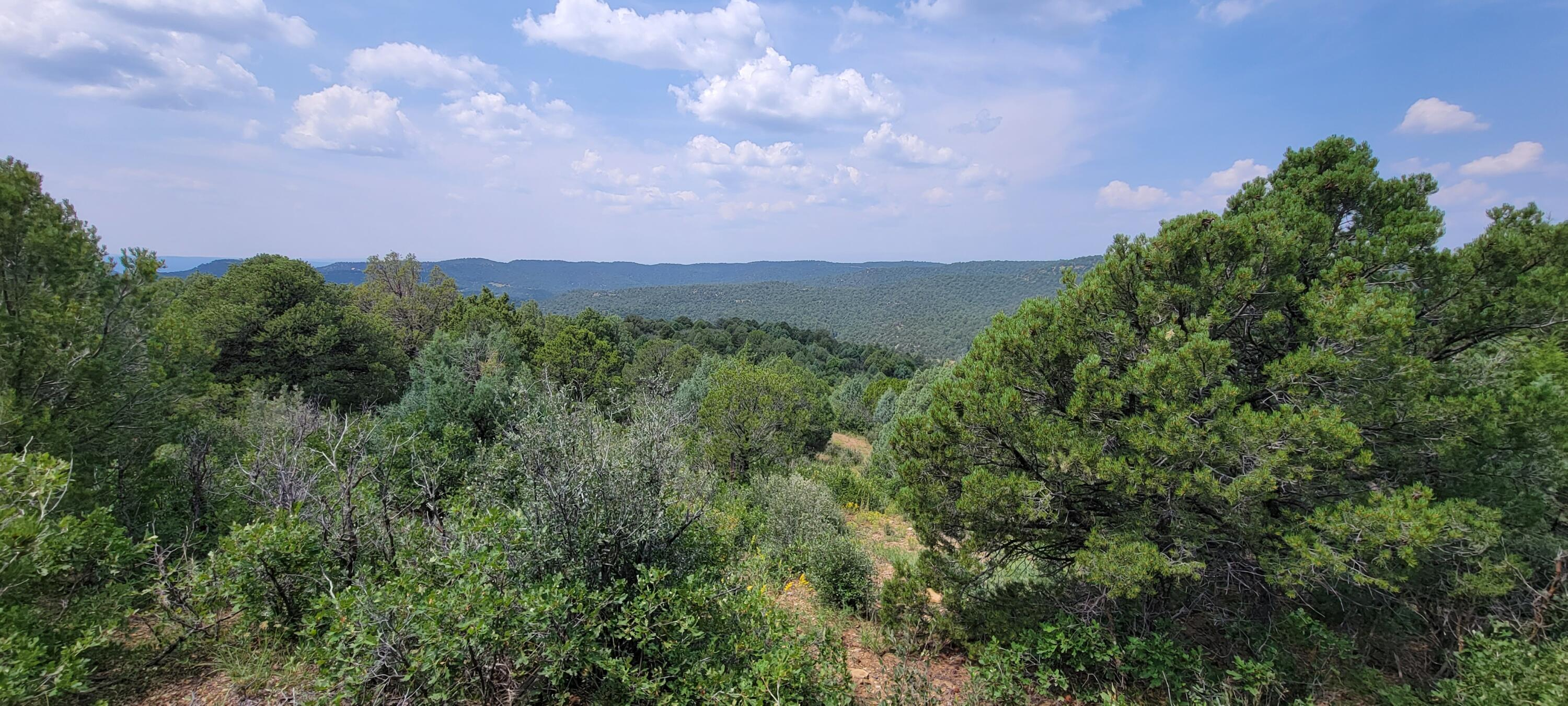 Property located at 15574 Picketwire Rd Trinidad CO 81082 photo