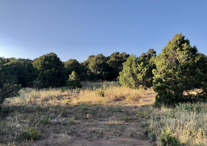 Property located at Lot 19 Navajo Ranch Resorts  Walsenburg CO 81089 photo