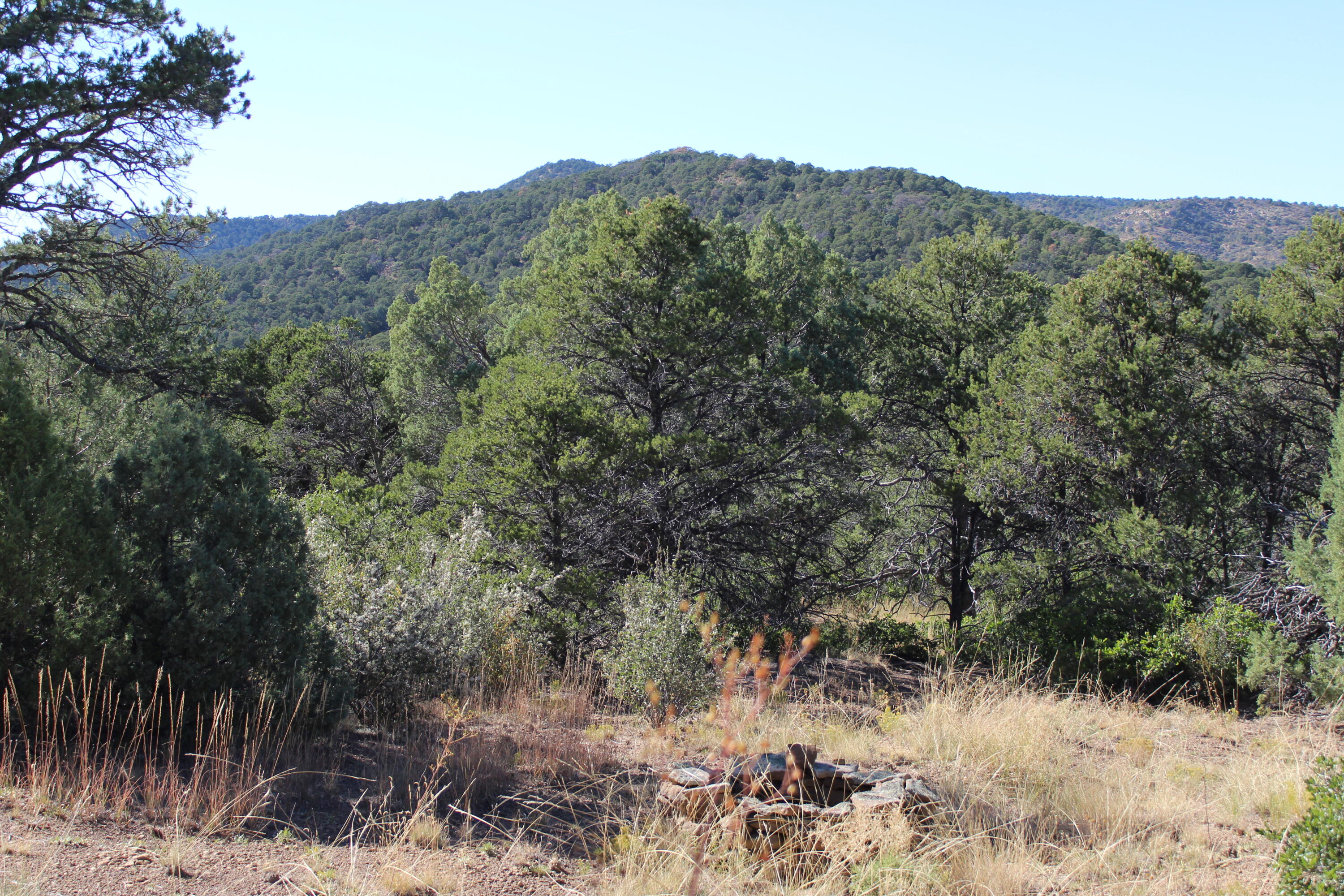 Property located at TBD Fisher Peak Ranch Lot M5  Trinidad CO 81082 photo