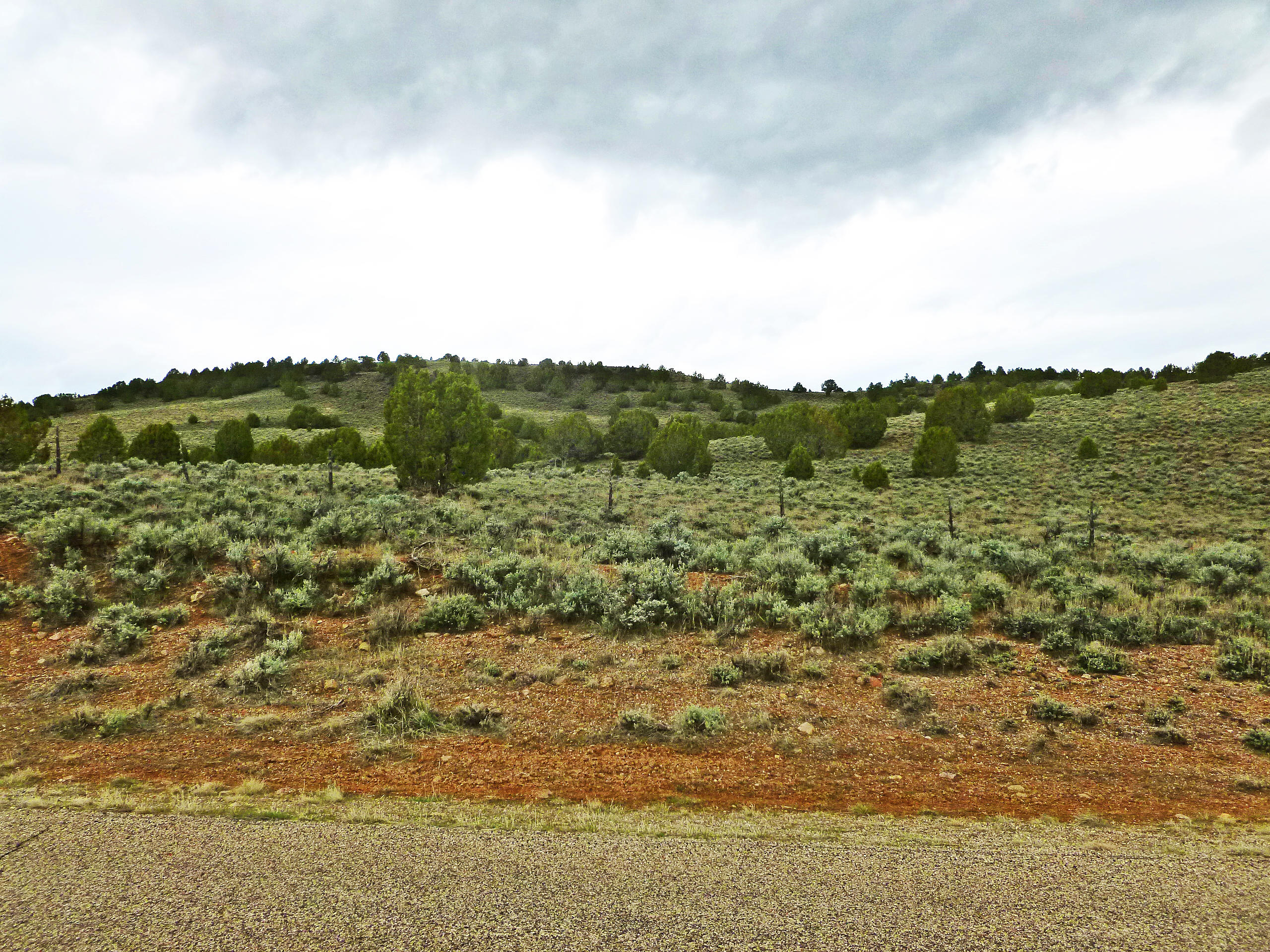 Outstanding 24.7 acre listing just off of Hwy 120 in Enterprise Utah, ,existing well with 2 Acre Ft water,gentle slope with Pinion and great views!!culvert pipe on access Rd, just a few feet of of paved Hwy 120, on the rout to Enterprise Reservoir, State water permit #71-4832 zoned OST-20 open space transitional per Washington County
