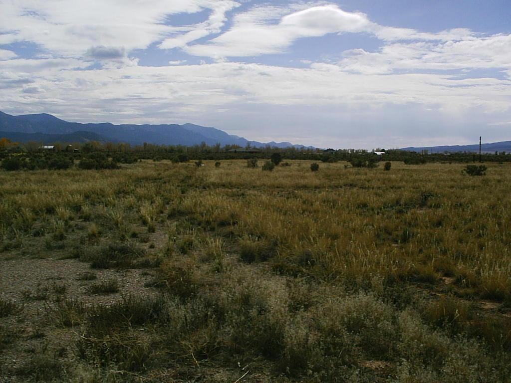 Lot 3 Blk E,Thorley Ranch Estates #B