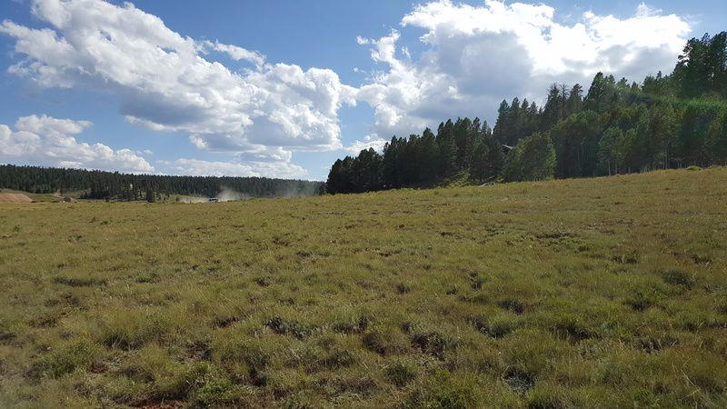 OWNER FINANCING available. Nestled in the beautiful mountains of So Utah is a rare opportunity for 10.5 acres located in the Duck Creek/Strawberry Valley area. This unique property has many possibilities. It is easily accessed off Hwy 14 & the Strawberry Valley airstrip. Year-round amenities are power, water, phone, internet and satellite TV.