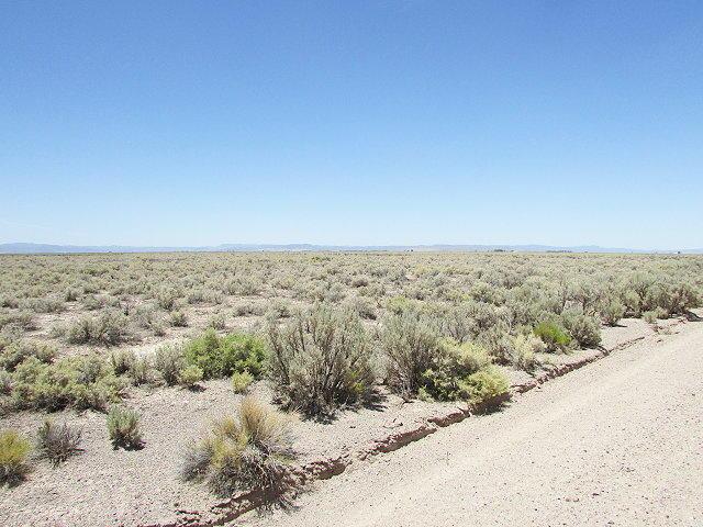 4800 N Antelope RD Beryl UT 84714