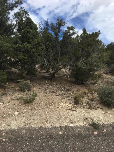53 Sundance Kid Trail