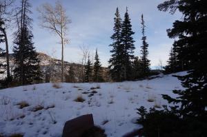 421 W Ridge View 19