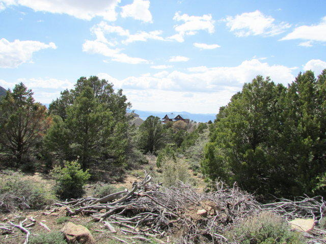 Gradual slope mountain building lot. .91 of an acre lot. Lovely area, cool mountain air, wildlife outside fun access.  Year-round subdivision.  CCR\