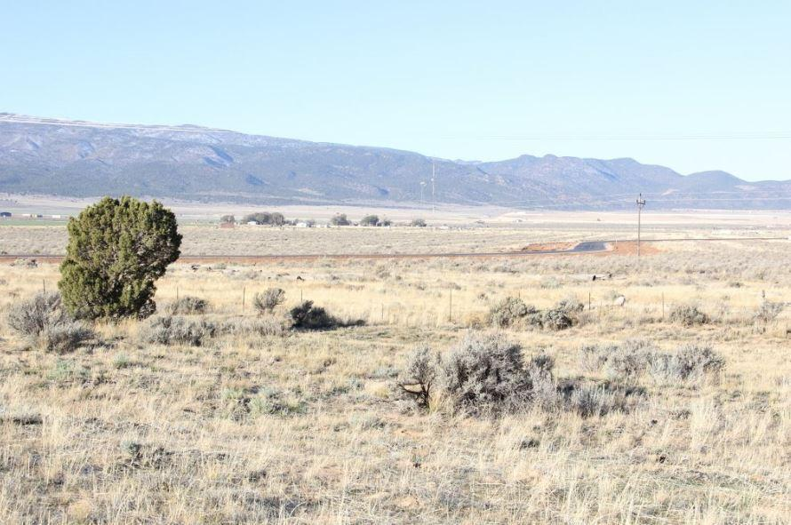49 Acres North of Vandenberghe RD