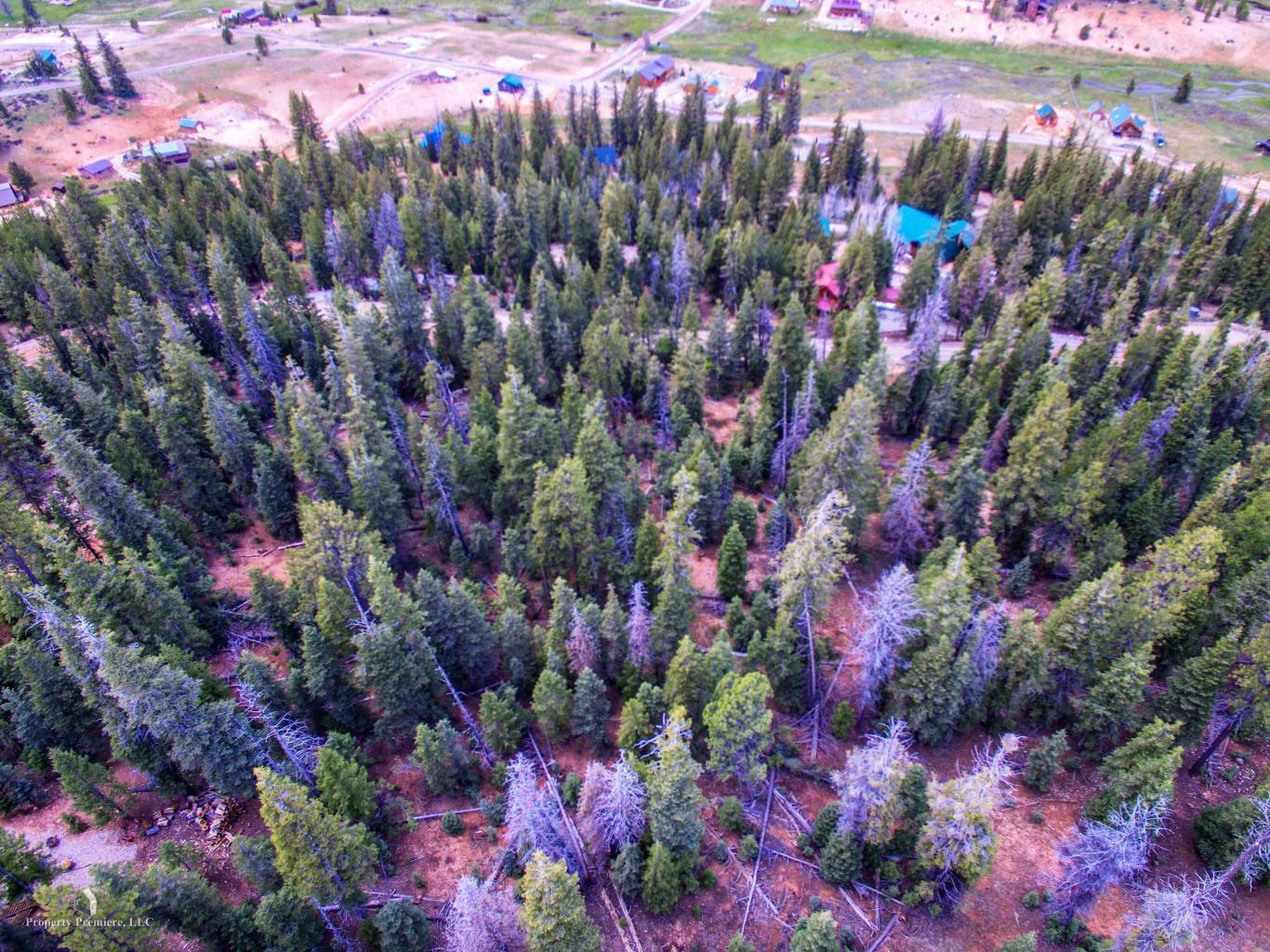 170 Apache Trail