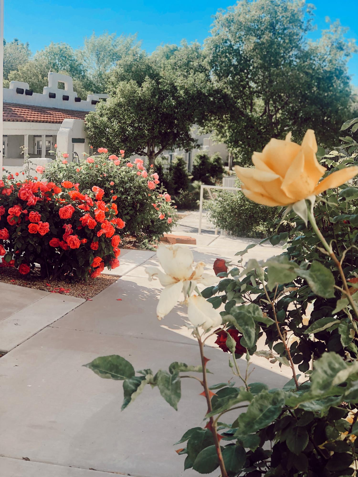 Welcome to Home Ownership at Amira Vacation Rental Resort! Turn Key Vacation Rental in the Heart of St George. Individually owned. Enjoy 2 pools, 1 hot tub, 4 Pickleball Courts, and Private Fitness Center. #2 is located POOL SIDE. Private Patio, Soaking Tub, Kitchenette, 2 TV\