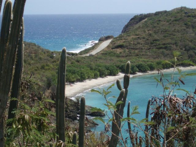 St John, Virgin Islands 00830, ,Land,For Sale,13-149