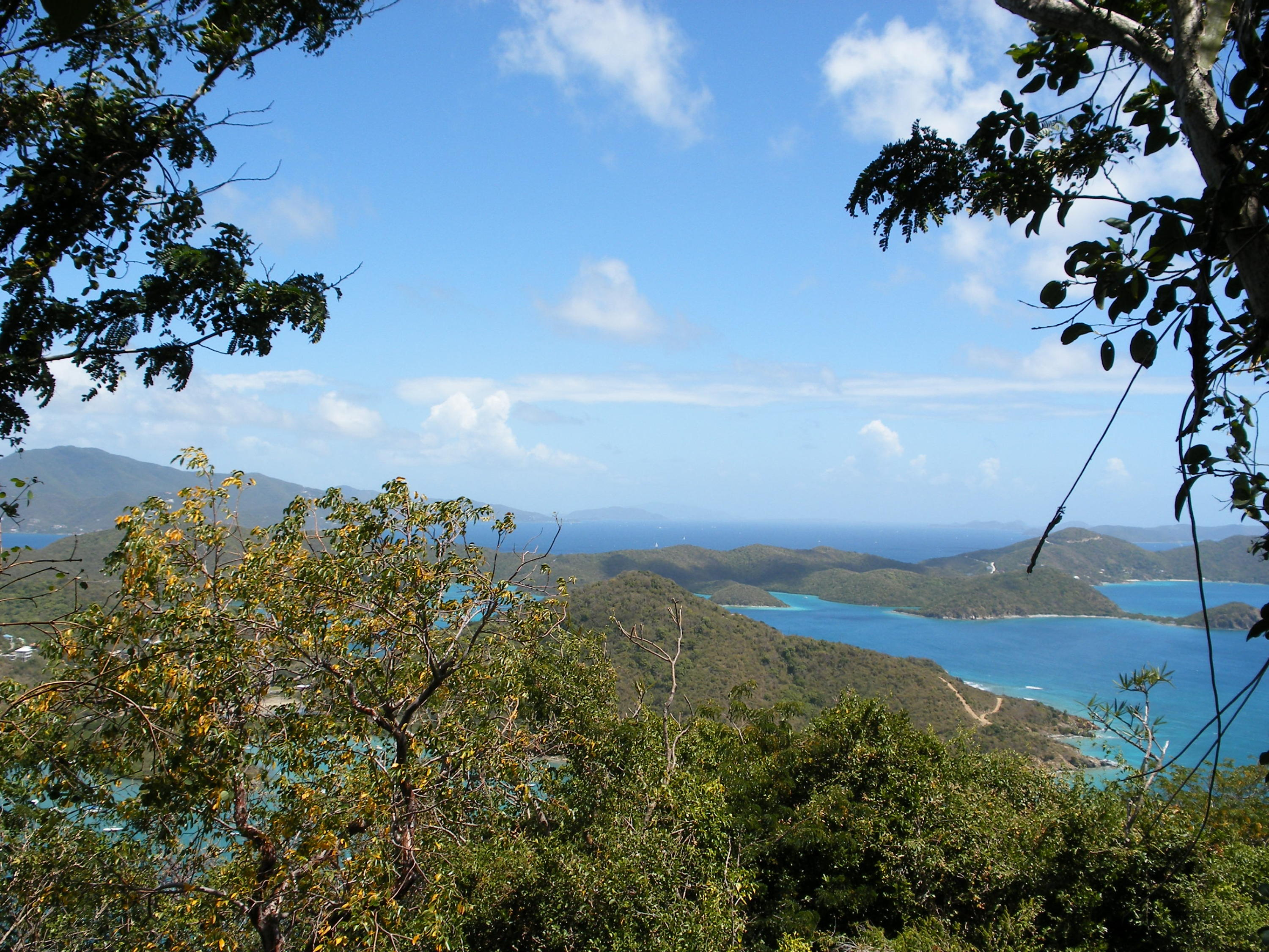 St John, Virgin Islands 00830, ,Land,For Sale,13-354