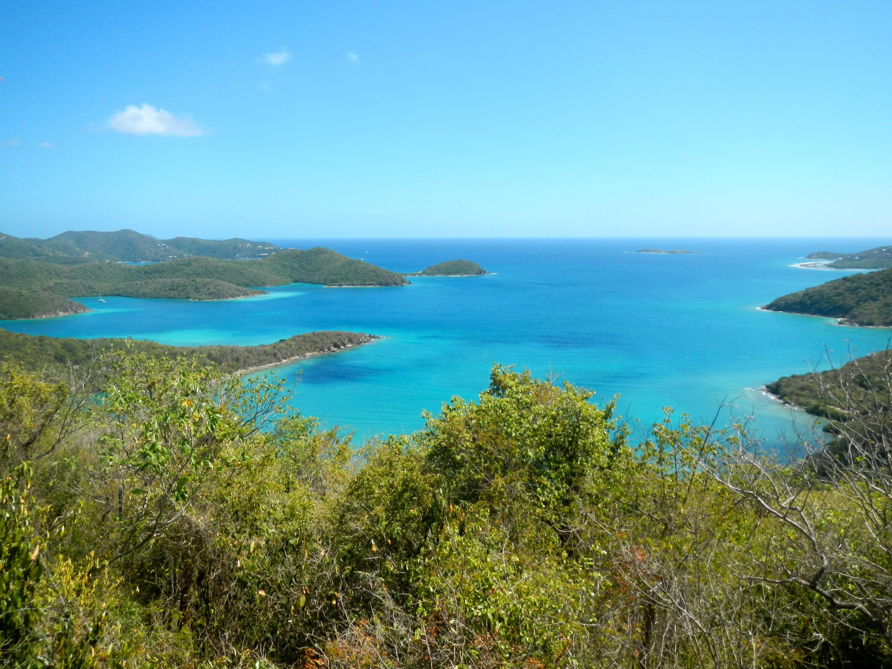 St John, Virgin Islands 00830, ,Land,For Sale,14-505
