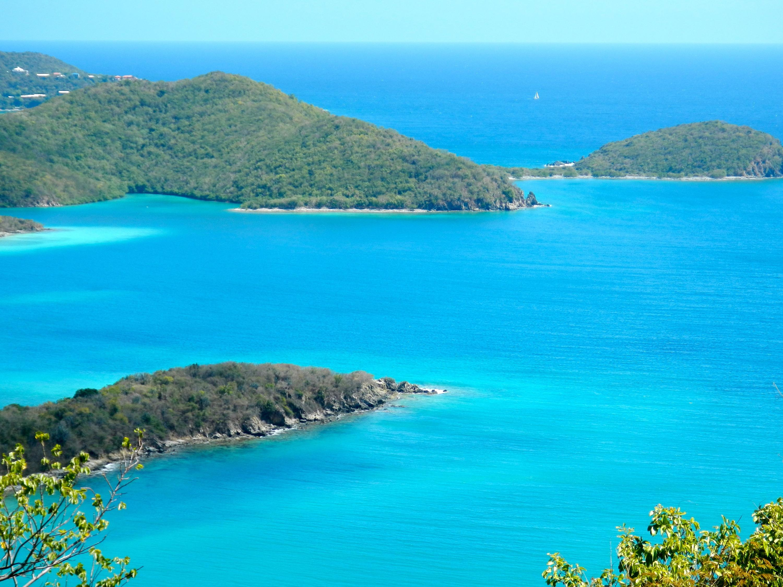 St John, Virgin Islands 00830, ,Land,For Sale,14-505