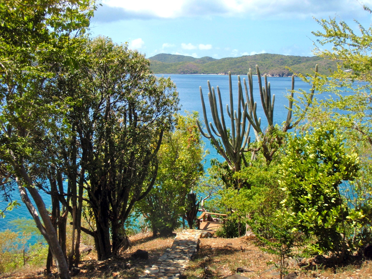 St John, Virgin Islands 00830, ,Land,For Sale,14-527